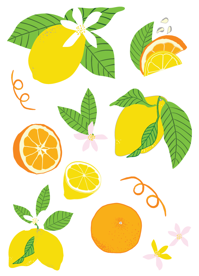 lemon-and-orange-motifs-illustrator-pattern-design