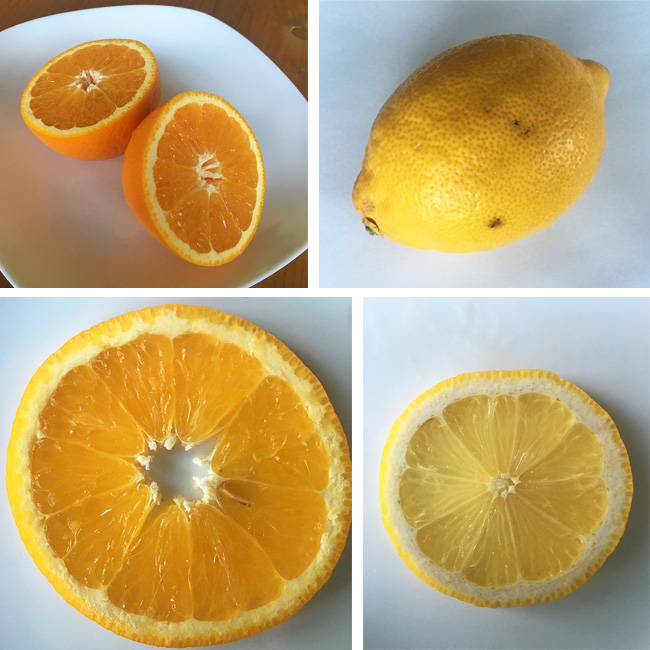 lemons-and-oranges-4-shot